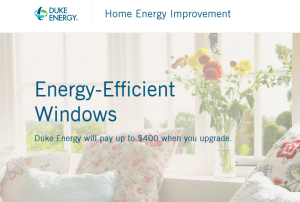 Energy Efficient window rebate
